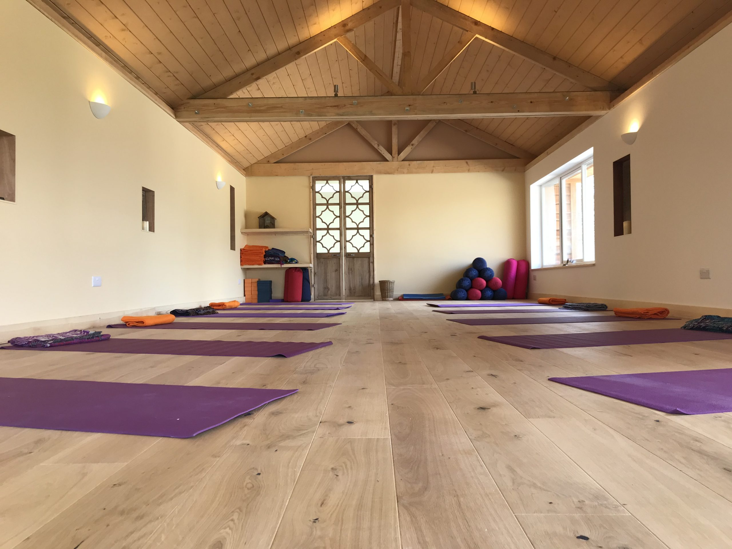 Neurogenic Yoga Classes Gentle Yoga With TRE for Relaxation and Health